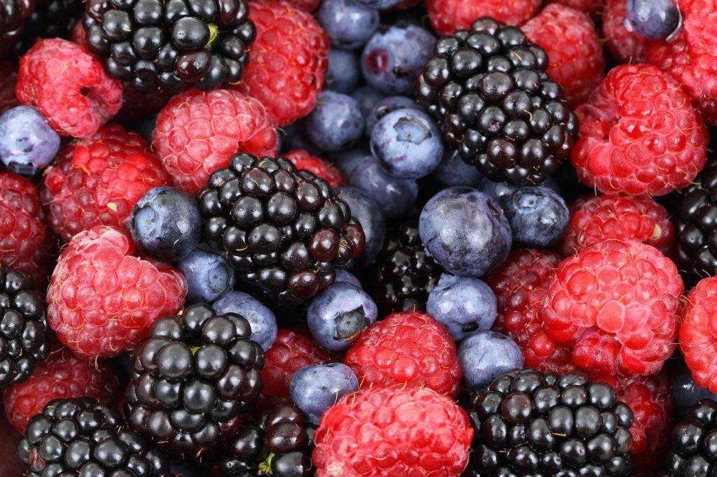12 denrées alimentaires qu'on peut congeler en cas de crise 3